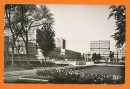 LE HAVRE - Les Jardins De L'Hôtel De Ville   (21484) - Le Havre