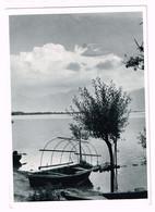 V5124 Minusio - Rivapiana - Lago Maggiore - Panorama / Non Viaggiata - TI Tessin
