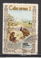 Cuba, Préhistoire, Prehistory, Archéologie, Archaeology, Homo Habilis, Crâne, Skull, Dents, Teeth - Préhistoire