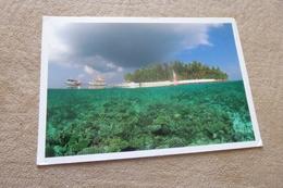 BELLES VUES.... - Maldives