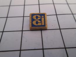 1012c Pin's Pins / Beau Et Rare / THEME : ARTHUS BERTRAND / Mini Pin's CGI - Arthus Bertrand