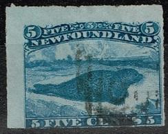Terre-Neuve - 1876 - Y&T N° 34 Oblitéré - Terre-Neuve