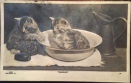 """Cpa, Tub-Night, Gaufrée, 2 Chats Jouant Avec Savon Sur La Table De Toilette,""""Taber-Bas Relief King Edward VII"""", 1908, - Gatti"""