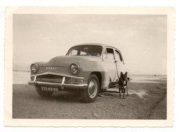 ZMALA  Algérie Photo SIMCA ARONDE Année 1957 - Unclassified