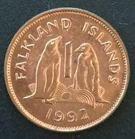 FALKLAND ISLANDS - 1 PENNY 1992 - Elizabeth II - 2eme Effigie - KM 2 - ( Îles Malouines ) - Falkland