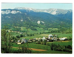 04 ALPES DE HAUTE PROVENCE SELONNET Le Grand Bois De Chabanon - Francia