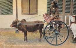 CEYLON (SRI LANKA) - COLOMBO - SINGHALESE RACE BULL AND CART - DATED 1922 ~ AN OLD POSTCARD #22439 - Sri Lanka (Ceylon)