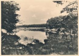 Nederland - 1946 - 5 Op 7,5 Cent Veth, Fotokaart Oisterwijk Het Groot Ader-ven, Briefkaart G287g - Ongebruikt - Ganzsachen