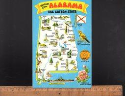 ALABAMA USA : Illustrated Card Of The State - Etats-Unis