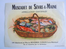 Etiket Etiquette De Vin Muscadet De Sèvre-&-Maine Clisson Poissons Crustacé Vissen Schelpdieren - Fishes