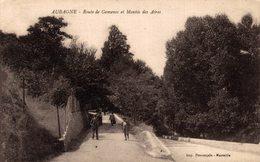 14166      AUBAGNE   ROUTE DE GEMENOS ET MONTEE DES AIRES - Aubagne