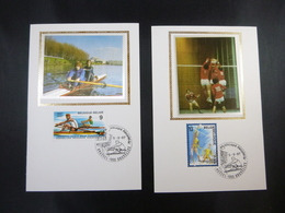 "BELG.1987 2259 & 2260 FDC Mcards Soie/zijde (Bruxs) : "" Roeien / Aviron & Volley-ball "" - FDC"