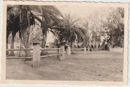 Tunisie, Kébili +/- 1940 - Africa