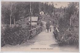 NUIVARA ELUJA (Ceylan Ceylon) - Sri Lanka (Ceylon)