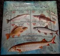 2013 - Caspian Sea Fish Sheet - Iran - Iran