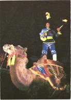 Circus Artist On Camel - Animals