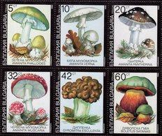 Bulgaria - 1990 - Mushrooms - Mint Stamp Set - Ungebraucht