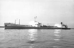 """¤¤  -   Le Bateau De Commerce """" SEA SERPENT """"   -  Cargo  -  ¤¤ - Koopvaardij"""