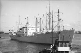 """¤¤  -   Le Bateau De Commerce """" BRAHEHOLM """"   -  Cargo  -  ¤¤ - Koopvaardij"""