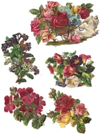 7 CHROMOS DECOUPIS  FLEURS - CHOCOLAT BESNIER - - Fleurs