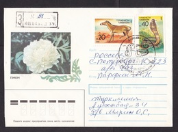 Turkmenistan: Registered Cover To Russia, 1992, 2 Stamps, Snake, Horse, Animal, Special Cancel (traces Of Use) - Turkmenistan
