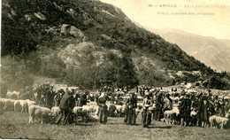 AX Les THERMES =  Foire Marché Des Moutons     1420 - Ax Les Thermes