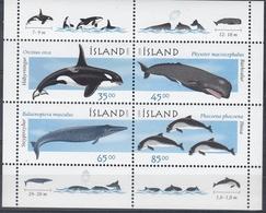 +Iceland 1999. Whales. Bloc. Michel 23. MNH(**) - Blocks & Sheetlets
