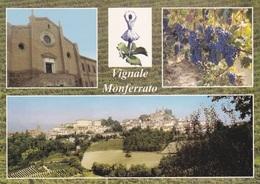 (A019) - VIGNALE MONFERRATO (Alessandria) - Multivedute - Alessandria