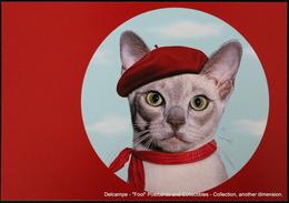 Famous Faces TAKKODA Pets Celebrity Photography Célébrités Animal Photographie Chat Avec Béret Rouge Cat With Red Beret - Animaux Habillés