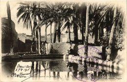 CPA AK Geiser 13 Figuig Grand Bassin De Zenaga ALGERIE (789657) - Algeria
