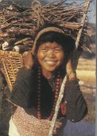 Népal - Photo Claude Sauvageot - Editée Par Le Comité Catholique Contre La Faim Et Pour Le Développement - - Népal
