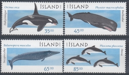 +Iceland 1999. Whales. Michel 905-08. AFA 890-93. MNH(**) - 1944-... Repubblica