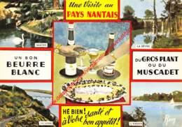 Pays Nantais - Nantes - (44) Loire Atlantique - Nantes