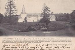 BELLIGNIES - Le Château - France