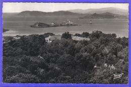Carte Postale 83. Île De Porquerolles  Le Mas Et Le Petit Langoustier  Très Beau Plan - Porquerolles