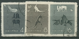 China 1958 Fossilien Dinosaurier 369/71 Gestempelt - Used Stamps