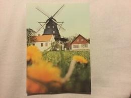 ARLOV - Moulin Dans La Campagne - Suède