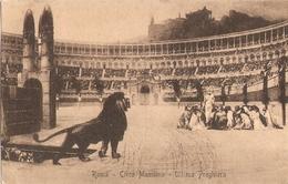 1727/A/FP/20 - ROMA - CIRCO MASSIMO: Ultima Preghiera - Altri