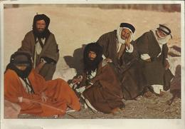 A Group Of Beduins - Palestine