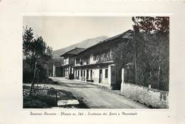 INVERSO PINASCA - Fleccia, Trattoria Dei Fiori E Municipio. - Bars, Hotels & Restaurants