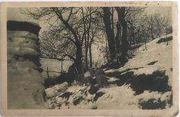 V 73428 - Postcards