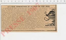 Presse 1907 Ligue Humanitaire De Londres Contre Le Pâté Foie Gras Alsace Strasbourg élevage (gavage ?) Des Oies 229J - Unclassified