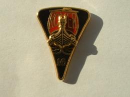 Pin's ROVER - LOGO DOUBLES MOULES - ARTHUS BERTRAND - Autres
