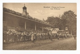 Watermael-Boitsfort Champ De Courses Les Tribunes Carte Postale Ancienne Animée - Watermael-Boitsfort - Watermaal-Bosvoorde