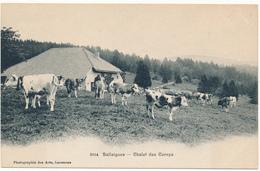 BALLAIGUES, VD -  Chalet Des Cernys - VD Vaud