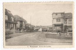 Watermael-Boitsfort Avenue Des Lucioles Carte Postale Ancienne - Watermael-Boitsfort - Watermaal-Bosvoorde