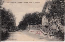 17  FORET DE LA COUBRE  ROUTE DU CLAPET   LES BAGATELLES - France