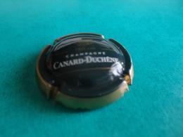 CAPSULE DE CHAMPAGNE  -   CANARD DUCHENE  -  N°  77c  Vert Foncé, Contour Or, 150 Ans - Autres