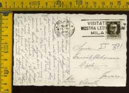 Regno Annullo A Targhetta Milano Leonardo Da Vinci Mostra Leonardesca - 1900-44 Victor Emmanuel III