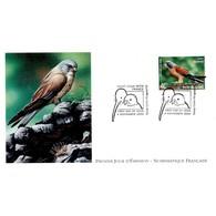 FDC LNF - Les Oiseaux Menacés. Faucon Crecerellette - 4/11/2000 Nouvelle Zélande - FDC